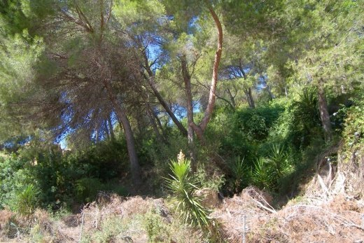 Plot for Sale in Montemar, Benissa