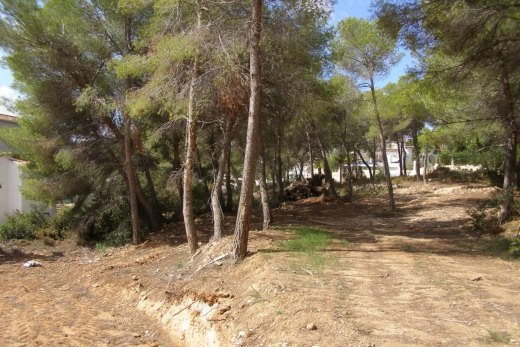 Various Plots for sale in Moraira, El Bosq...