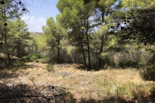 Plot for sale in Moraira, open views.